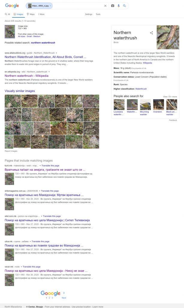 Резултатите од Гугл за слики слични на онаа со мртва птица.